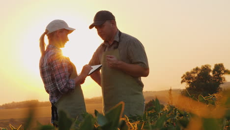 Farmers-Man-And-Woman-Communicate-In-The-Field-At-Sunset-Use-A-Tablet