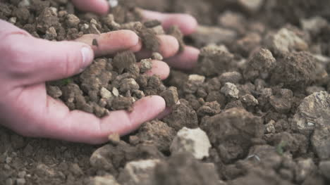 Interior-Close-Up-Shot-Of-Adult-Man-Hands-Holding-Soil-
