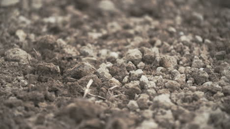Close-Up-Of-Soil-Agriculture-Background-