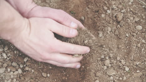 Young-Farmer-Examining-Soil-In-Hands-