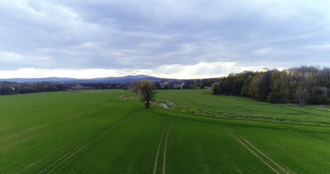 Fields-With-Various-Types-Of-Agriculture-4K-2