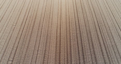 Aerial-View-Fresh-Cultivated-Field-2