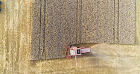 Combine-Harvester-Working-In-Agricultural-Field-11