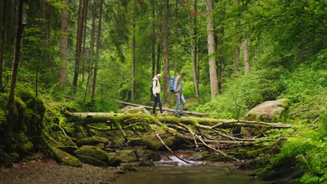 A-Couple-Of-Tourists-Cross-The-Mountain-River-Along-A-Fallen-Tree-Adventures-And-Extreme-Tourism-Ove