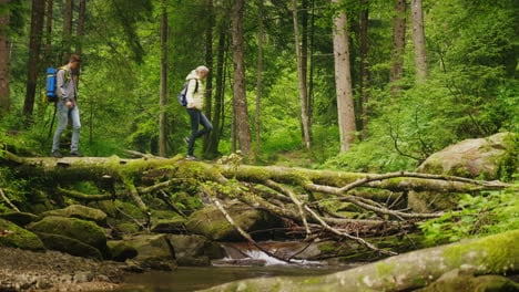 Two-Tourists-Cross-The-Mountain-River-Along-A-Fallen-Tree-Adventures-And-An-Active-Way-Of-Life-4K-Vi
