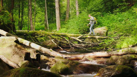 A-Tourist-With-A-Backpack-Is-Crossing-The-Mountain-River-Through-A-Fallen-Tree-4K-Video