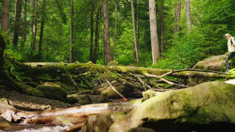 A-Traveler-A-Woman-In-A-Down-Jacket-Crosses-A-Mountain-River-Over-A-Log-4K-Video