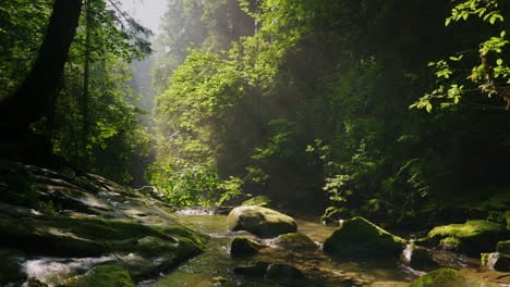 Clean-Mountain-Stream-In-The-Mysterious-Morning-Forest-The-Rays-Of-The-Sun-Make-Their-Way-Through-Th