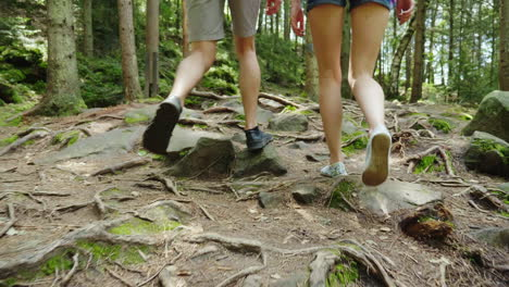 A-Couple-Of-Tourists-Are-Walking-Along-A-Mountain-Path-Covered-With-The-Roots-Of-Large-Trees-Adventu