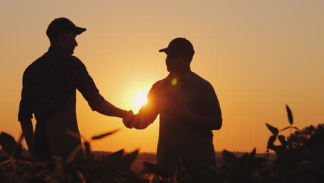 Two-Farmers-Talk-On-The-Field-Then-Shake-Hands-Use-A-Tablet-4K-Video