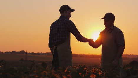 An-Elderly-Farmer-Shakes-Hands-With-A-Young-Colleague-Smile-Positive-Emotions