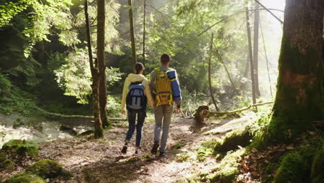 A-Young-Couple-Walks-Along-A-Scenic-Path-In-The-Woods