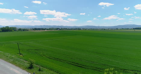 Wide-Agricultural-Field-Aerial-View