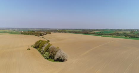 Aerial-View-Of-Agricultural-Field-1