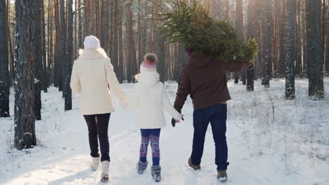 A-Happy-Family-With-A-Child-Is-Walking-Along-A-Snow-Covered-Forest-The-Father-Is-Carrying-A-Christma
