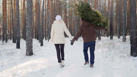 A-Young-Couple-Is-Walking-Along-A-Snow-Covered-Forest-A-Man-Is-Carrying-A-Christmas-Tree-Christmas-E