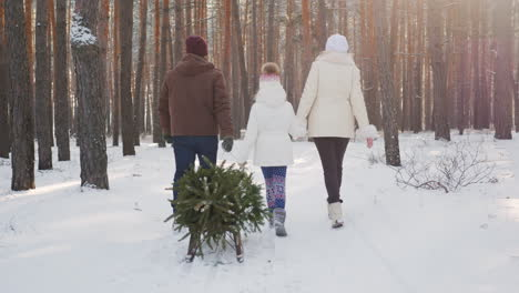 A-Married-Couple-With-A-Child-Walks-Through-A-Snow-Covered-Forest-A-Girl-Is-Dragging-A-Sled-With-A-C