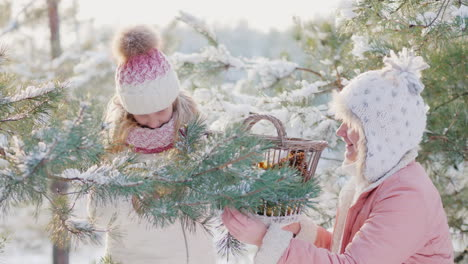 A-Little-Girl-And-A-Young-Mother-Decorate-A-Christmas-Tree-With-Decorative-Balls-In-The-Snow-Covered
