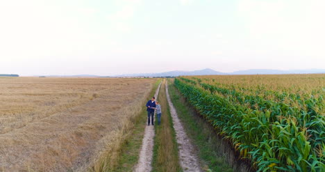 Aerial-View-Of-Growing-Corn-On-Agriculture-Field-Farmers-Walking-At-Agricultural-Field-3