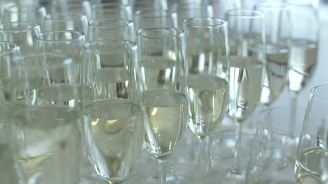 Champagne-Many-Champagne-Flutes-With-Sparkling-Champagne-6
