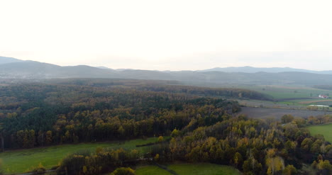 Flying-Over-Forest-Forest-From-Above-13