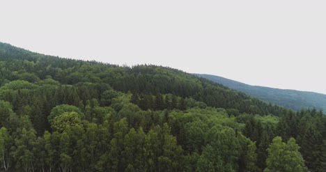 Flying-Over-The-Beautiful-Forest-Trees-Landscape-Panorama-76