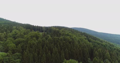 Flying-Over-The-Beautiful-Forest-Trees-Landscape-Panorama-77