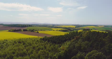 Flying-Over-The-Beautiful-Forest-Trees-Landscape-Panorama-79