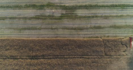 Machinery-Harvesting-Crops-On-Field-9