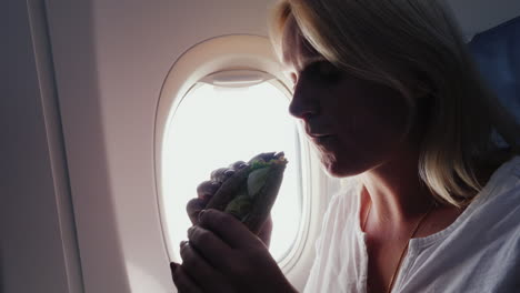 A-Woman-Eats-A-Sandwich-In-The-Passenger-Cabin-With-Appetite-Snack-In-The-Journey-Service-On-Board