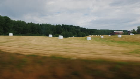 View-From-The-Window-On-The-Agricultural-Land-Of-Norway-Where-Mowing-Hay-And-Lying-In-Haystacks-Beau