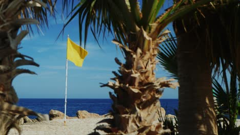 Yellow-Flag-On-A-Background-Of-Blue-Sky-Palm-Trees-In-The-Foreground-