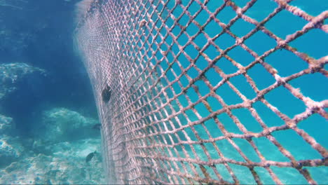 Mesh-To-Prevent-Fish-From-Entering-The-Resort-With-Holidaymakers