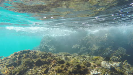 Surf-In-The-Coral-Reef-A-View-From-Under-The-Water