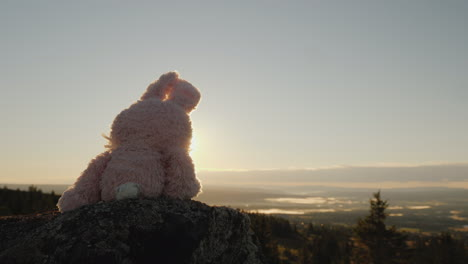 Toy-Plush-Rabbit-Sitting-On-Top-Of-A-Mountain-In-The-Background-Of-The-Picturesque-Mountain-Landscap