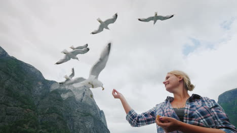 A-Woman-Is-Feeding-Gulls-A-Cruise-On-The-Fjords-In-Norway-Popular-Entertainment-For-Tourists-4k-Vide