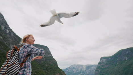 A-Tourist-Feeds-The-Birds-On-The-Background-Of-The-Fjords-Of-Norway-Scenic-Cruise-4k-Video