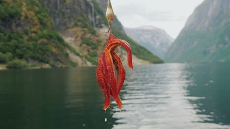 A-Starfish-Hangs-On-A-Hook-Against-The-Backdrop-Of-A-Fjord-In-Norway-4k-Video