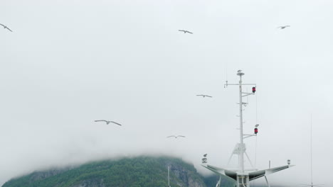 Seagulls-Fly-And-Sit-On-The-Mast-Of-The-Ship-Fjord-Cruise-In-Norway