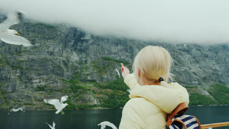 A-Woman-Feeds-Gullible-Seagulls-Cruise-On-The-Fjords-Of-Norway-4k-Video