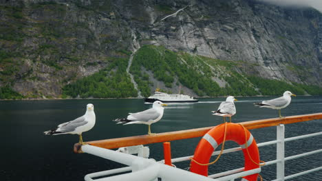 A-Flock-Of-Seagulls-Sits-On-The-Rails-Of-A-Cruise-Ship-That-Sails-Along-Picturesque-Norwegian-Fjords