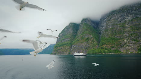 Landscapes-Of-Norway---A-Picturesque-Fjord-In-The-Distance-A-Ship-Sails-In-The-Foreground-Gulls-Fly