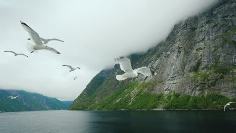 Cruise-Along-The-Picturesque-Fjord-In-Norway-View-From-The-Ship