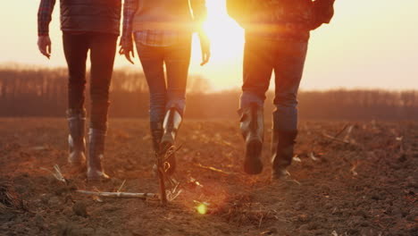 Three-Farmers-Go-Ahead-On-A-Plowed-Field-At-Sunset-Young-Team-Of-Farmers-4k-Video