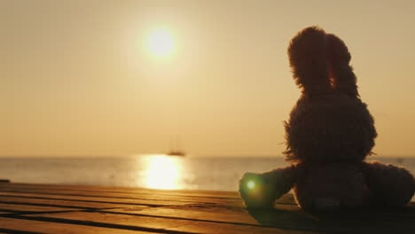 Teddy-Hare-Meets-The-Sunrise-On-The-Sea-Children-s-Dreams-Concept
