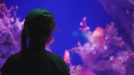 Silhouette-Of-A-Little-Girl-Looking-At-A-Huge-Aquarium-With-Sea-Fishes-Inspiration-And-Impressions-C