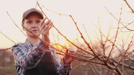 Portrait-Of-A-Woman-Working-In-The-Garden-At-Sunset-Inspects-Young-Shoots-Of-A-Tree