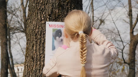 A-Girl-Is-Looking-For-A-Lost-Dog---A-Poster-About-A-Missing-Pet-Is-Placed-On-The-Tree