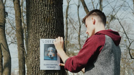 Teen-Puts-Up-Ads-For-Missing-Dogs