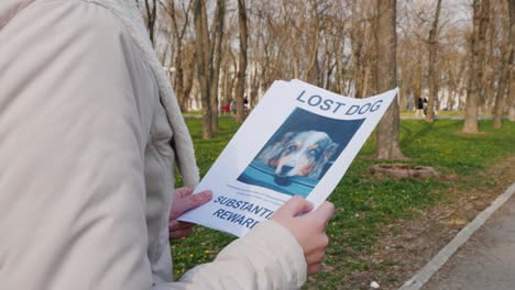 Man-Goes-Through-The-Park-With-A-Poster-Of-A-Dog-Missing
